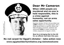 cameron_rabaa_poster